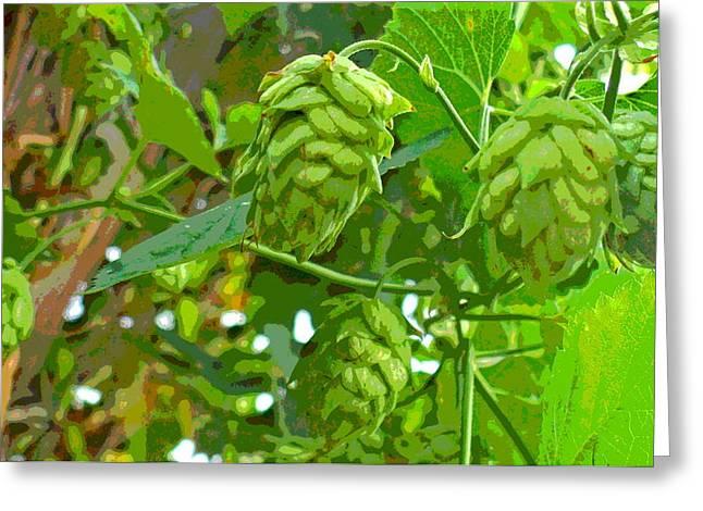 Hops Vine Leaf And Seed Cones Greeting Card
