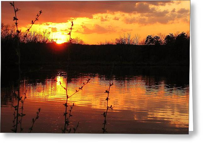 Horn Pond Sunset 8 Greeting Card