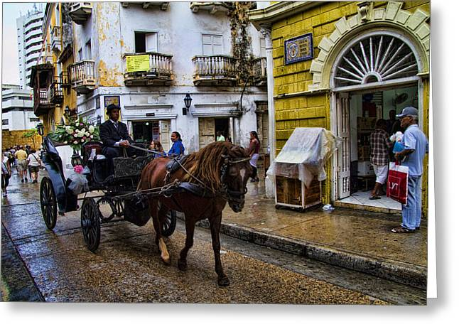 Horse And Buggy In Old Cartagena Colombia Greeting Card by David Smith