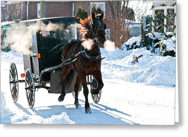 Horse And Buggy In The Snow Greeting Card
