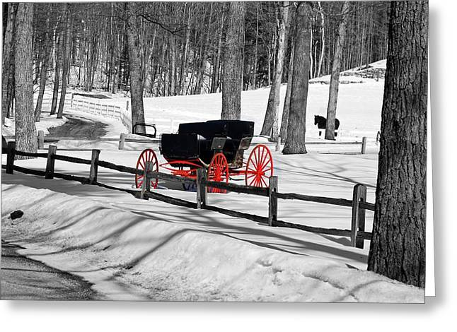 Greeting Card featuring the photograph Horse And Buggy - No Work Today No. 2 by Janice Adomeit