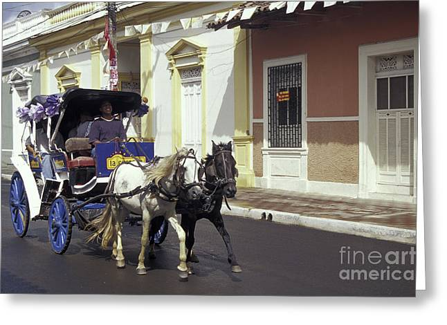 Horse And Carriage Granada Nicaragua Greeting Card by John  Mitchell