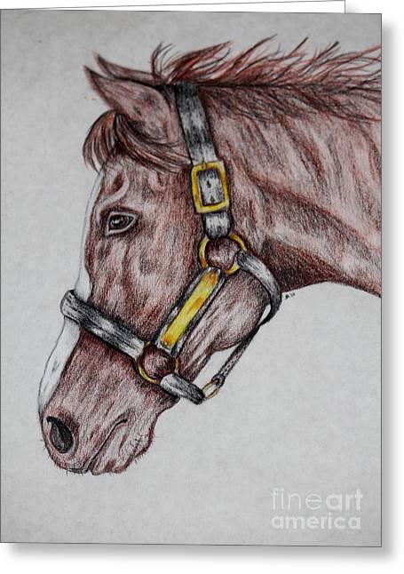 Horse Head 1 Greeting Card