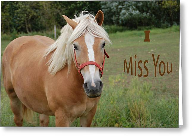 Horse Miss You Greeting Card by Aimee L Maher Photography and Art Visit ALMGallerydotcom