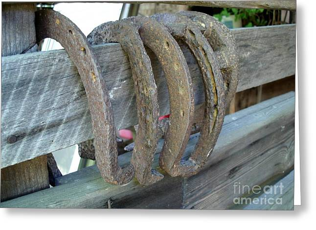 Horse Shoes Greeting Card