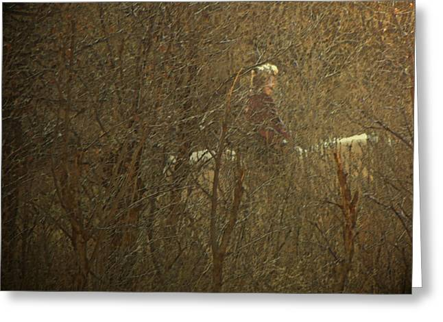 Horseback In The Garden Greeting Card by Lenore Senior