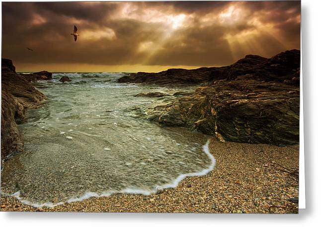 Horseley Cove Greeting Card by Mark Leader