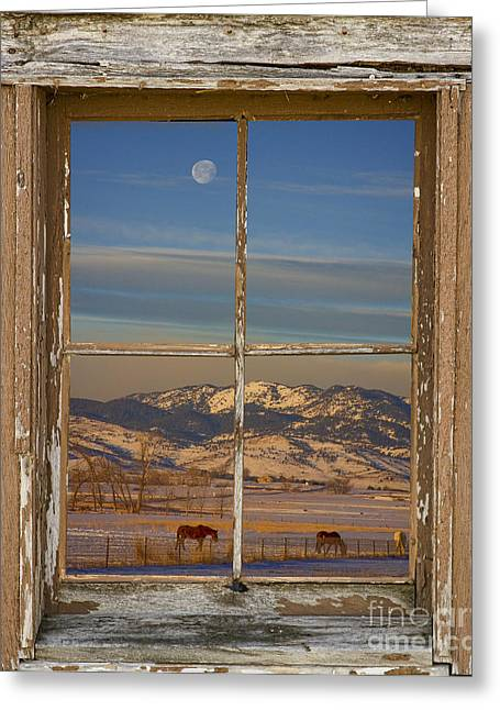 Horses And Moon Rustic Farm Window View Greeting Card