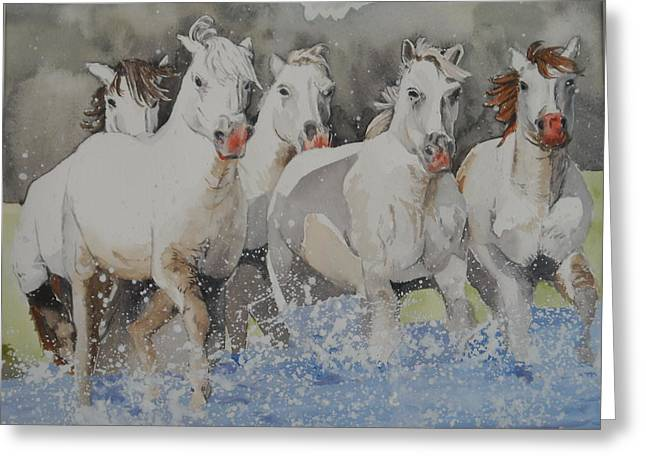 Horses Thru Water Greeting Card