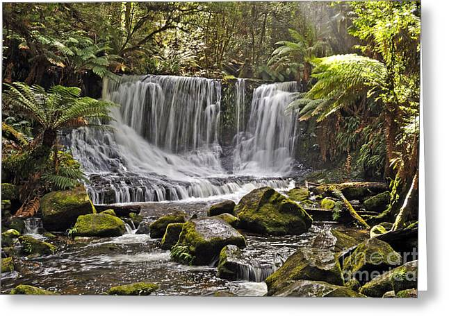 Horseshoe Falls Greeting Card by Raoul Madden