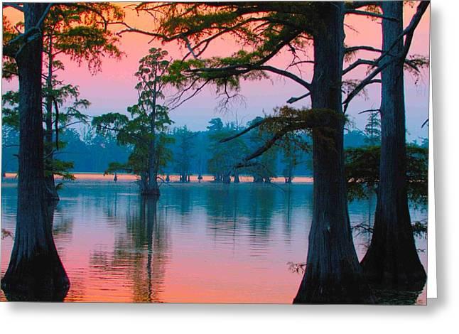 Horseshoe Lake Greeting Card by Donna Caplinger