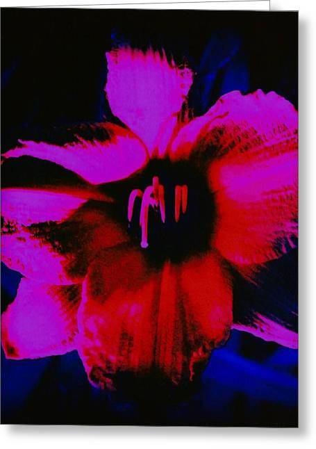Greeting Card featuring the photograph Hot by Carolyn Repka