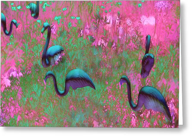 Hot Pink Flamingos Garden Abstract Art  Greeting Card by Kathy Fornal