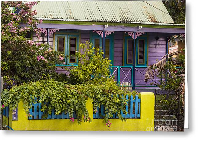House Of Colors Greeting Card by Rene Triay Photography