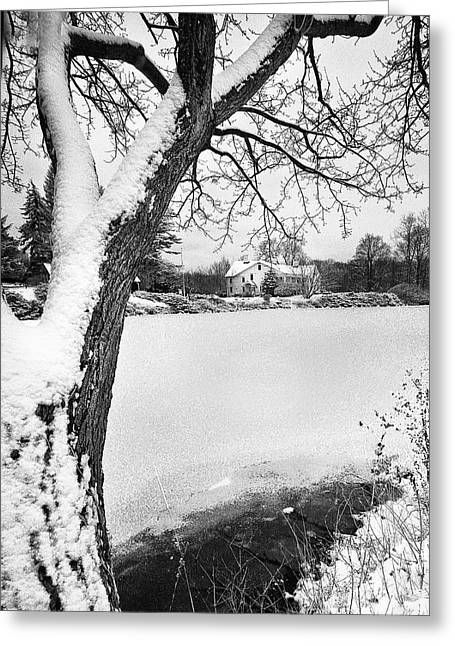 House On Frozen Lake Greeting Card by Ercole Gaudioso