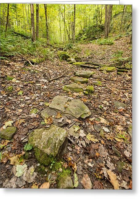 Hubbard Park Trail Five Greeting Card by Josh Whalen
