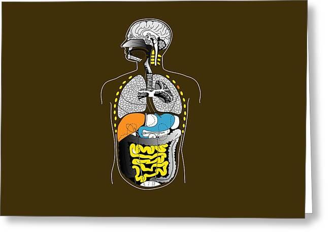 Human Internal Organs, Artwork Greeting Card by Francis Leroy, Biocosmos