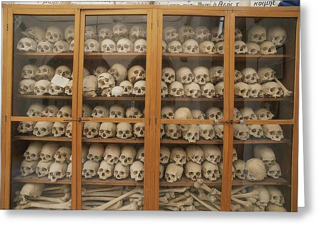 Human Skulls And Femurs Fill A Display Greeting Card