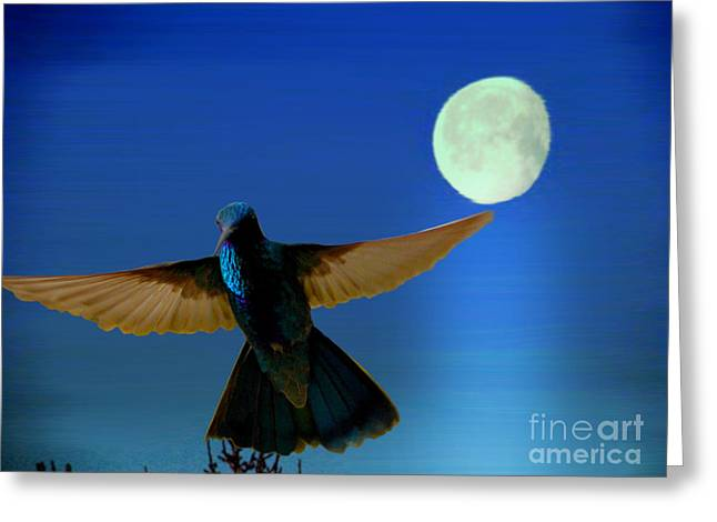 Hummingbird Moon II Greeting Card by Al Bourassa