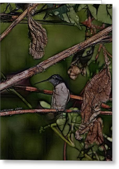 Greeting Card featuring the photograph Hummingbird Waiting For Dinner by EricaMaxine  Price