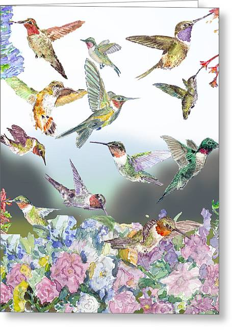 Hummingbirds Galore Greeting Card by Barry Jones