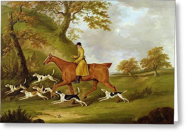 Huntsman And Hounds Greeting Card by John Nott Sartorius