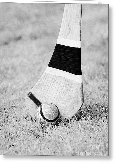 Hurling Stick And Ball Greeting Card by Joe Fox