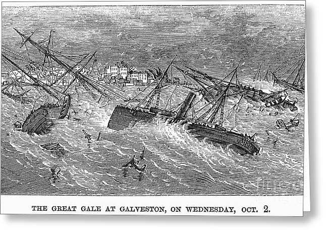 Hurricane: Galveston, 1867 Greeting Card by Granger