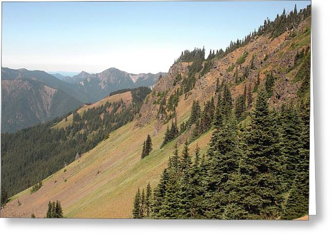 Hurricane Ridge 2 Greeting Card by Fred Russell