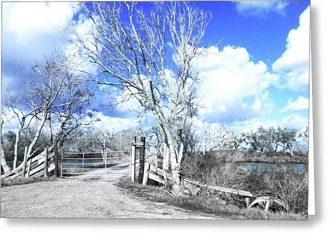Greeting Card featuring the photograph Hwy 82 Coastal Louisiana by Lizi Beard-Ward