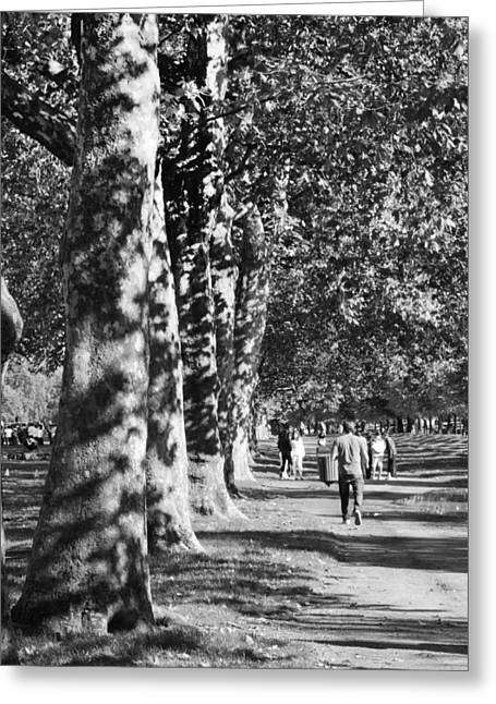 Greeting Card featuring the photograph Hyde Park Trees by Maj Seda