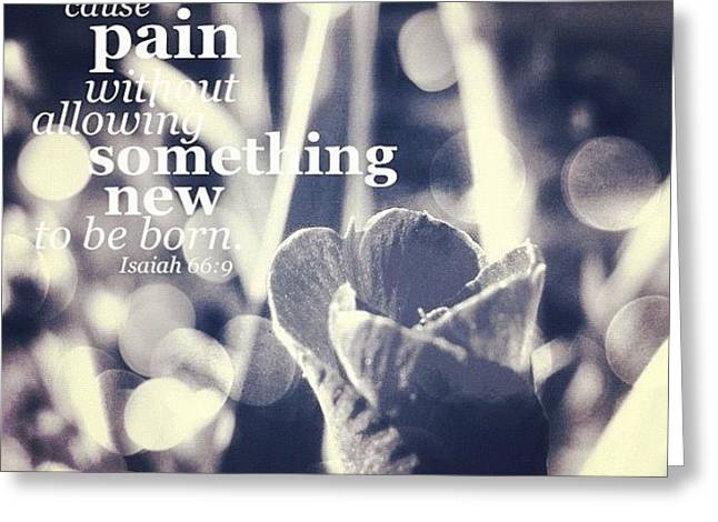 ...i Will Not Cause Pain Without Greeting Card by Traci Beeson