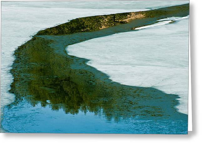 Ice Borders Greeting Card by Colleen Coccia