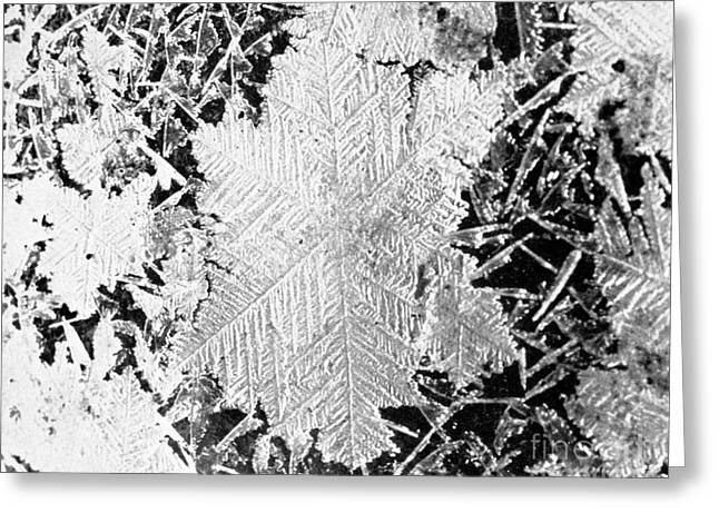 Ice Crystals, 1926 Greeting Card