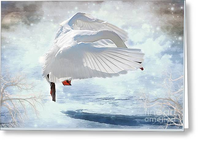 Swans Dance Of Spring Greeting Card