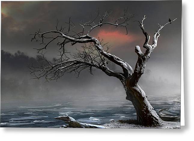Ice Floes Greeting Card by Igor Zenin