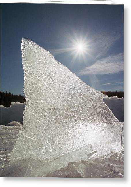 Ice Formation Along The Bow River Greeting Card by Darwin Wiggett