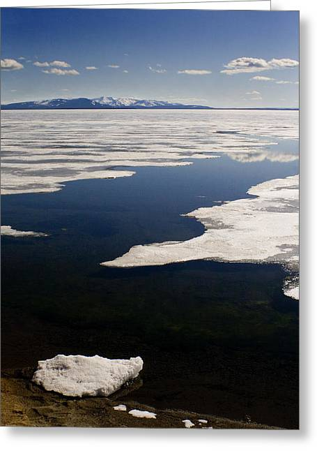 Greeting Card featuring the photograph Ice On Yellowstone Lake by J L Woody Wooden