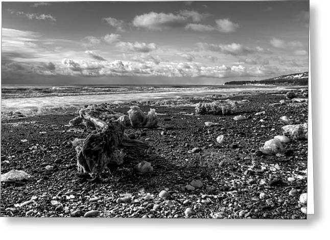 Greeting Card featuring the photograph Icy Alaskan Beach by Michele Cornelius