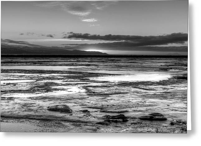 Greeting Card featuring the photograph Icy Bay At Sunset by Michele Cornelius