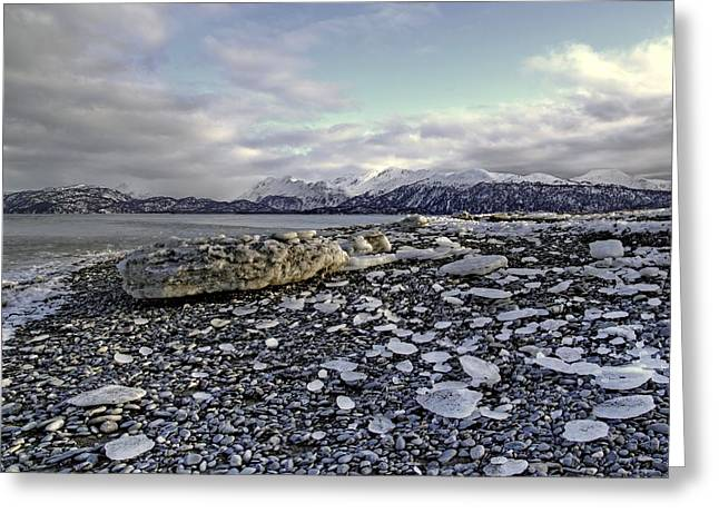 Greeting Card featuring the photograph Icy Beach by Michele Cornelius