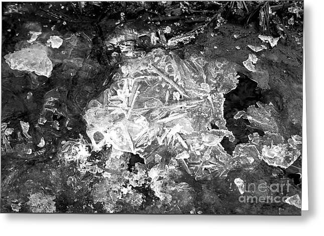 Greeting Card featuring the photograph Icy Road by Chalet Roome-Rigdon