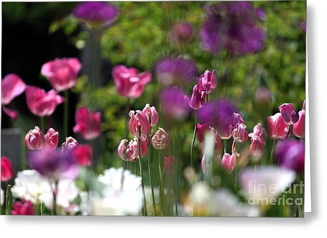 iIn the Garden Greeting Card by Billie-Jo Miller