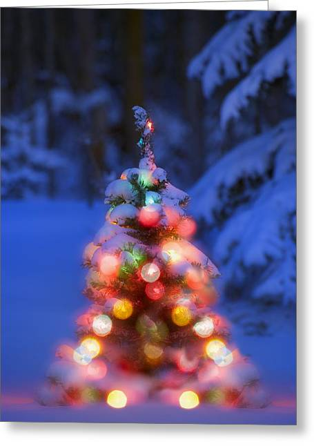 Illuminated Christmas Tree In A Forest Greeting Card by Carson Ganci