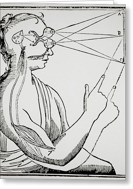 Illustration From De Homine By Rene Descartes Greeting Card by Dr Jeremy Burgess.