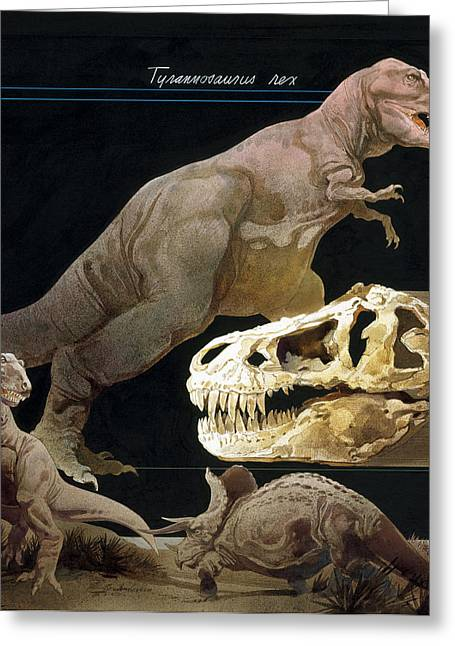Illustration Of Tyrannosaurus Rex Greeting Card