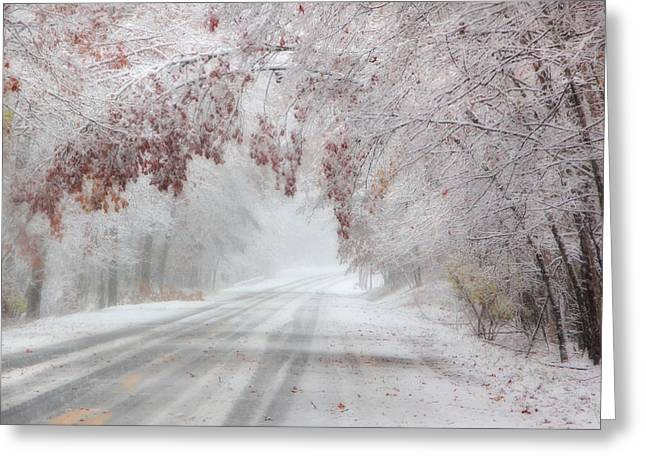 I'm Dreaming Of A White Autumn Greeting Card by Lori Deiter