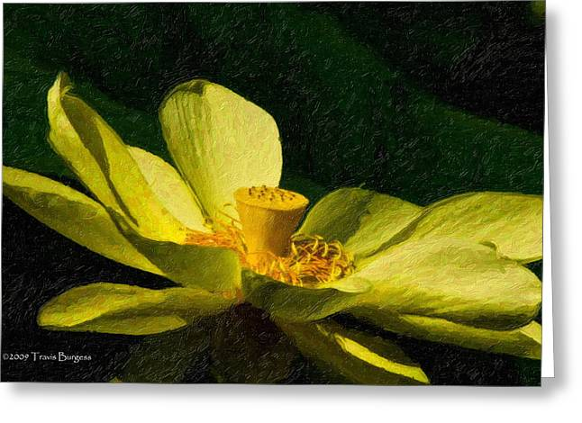 Greeting Card featuring the photograph Impasto Lotus by Travis Burgess
