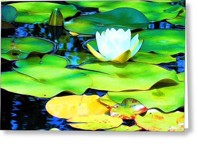 Impressions Of A White Water Lily Greeting Card