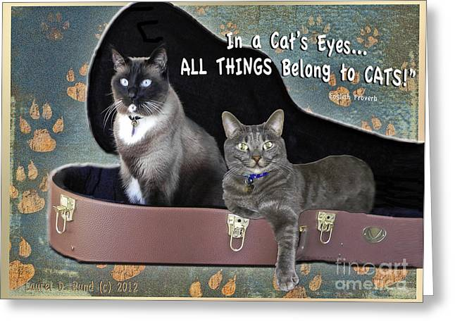 In A Cats Eyes Greeting Card